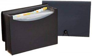 AmazonBasics Lot de 2 porte-documents type trieurs à soufflets Format lettre (A4) Noir/Gris de la marque AmazonBasics image 0 produit