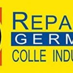 Colle industrielle allemande Repar-eX 20g et poudre d'assemblage 30g de la marque Repar-eX image 4 produit