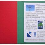 Exacompta 55342E Ordonator Trieur de Bureau Rigide 12 Compartiments Bleu de la marque Exacompta image 3 produit
