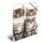 Herma 7138 Farde à rabats A4 en plastique, série animaux – motif chats, avec élastiques, 1pièce de la marque HERMA image 1 produit
