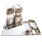 Herma 7138 Farde à rabats A4 en plastique, série animaux – motif chats, avec élastiques, 1pièce de la marque HERMA image 2 produit