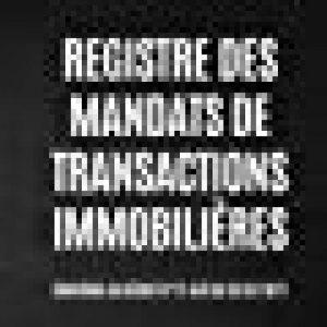 Registre des Mandats de Transactions Immobilières de la marque AL Notebooks image 0 produit