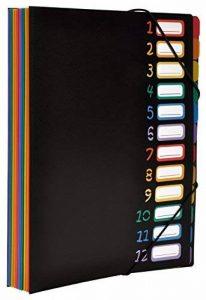 Viquel Rainbow Class - Trieur accordéon 12 compartiments en plastique - Pochette extensible pour classer et transporter des documents - Rangement papier format A4 de la marque Viquel image 0 produit