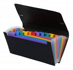 Viquel Rainbow Class - Trieur Accordéon de Bureau, Porte Document 12 Positions, Organisateur de Bureau Extensible, Trieur Format Chèque en Plastique, 26 x 13 cm de la marque Viquel image 0 produit