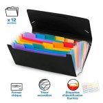 Viquel Rainbow Class - Trieur Accordéon de Bureau, Porte Document 12 Positions, Organisateur de Bureau Extensible, Trieur Format Chèque en Plastique, 26 x 13 cm de la marque Viquel image 1 produit